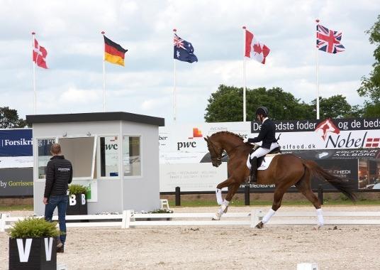 Equestrian - Denmark 2017 PC