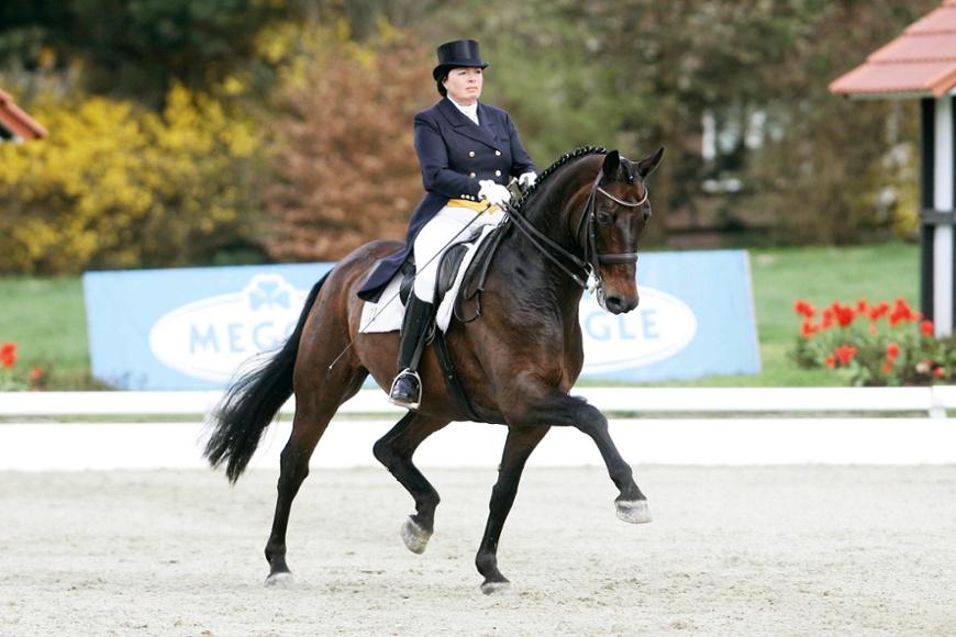 Equestrian - djockey Kasselmann Front
