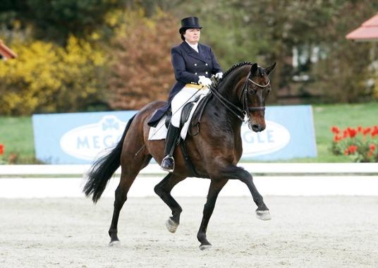 Equestrian - djockey Kasselmann PC