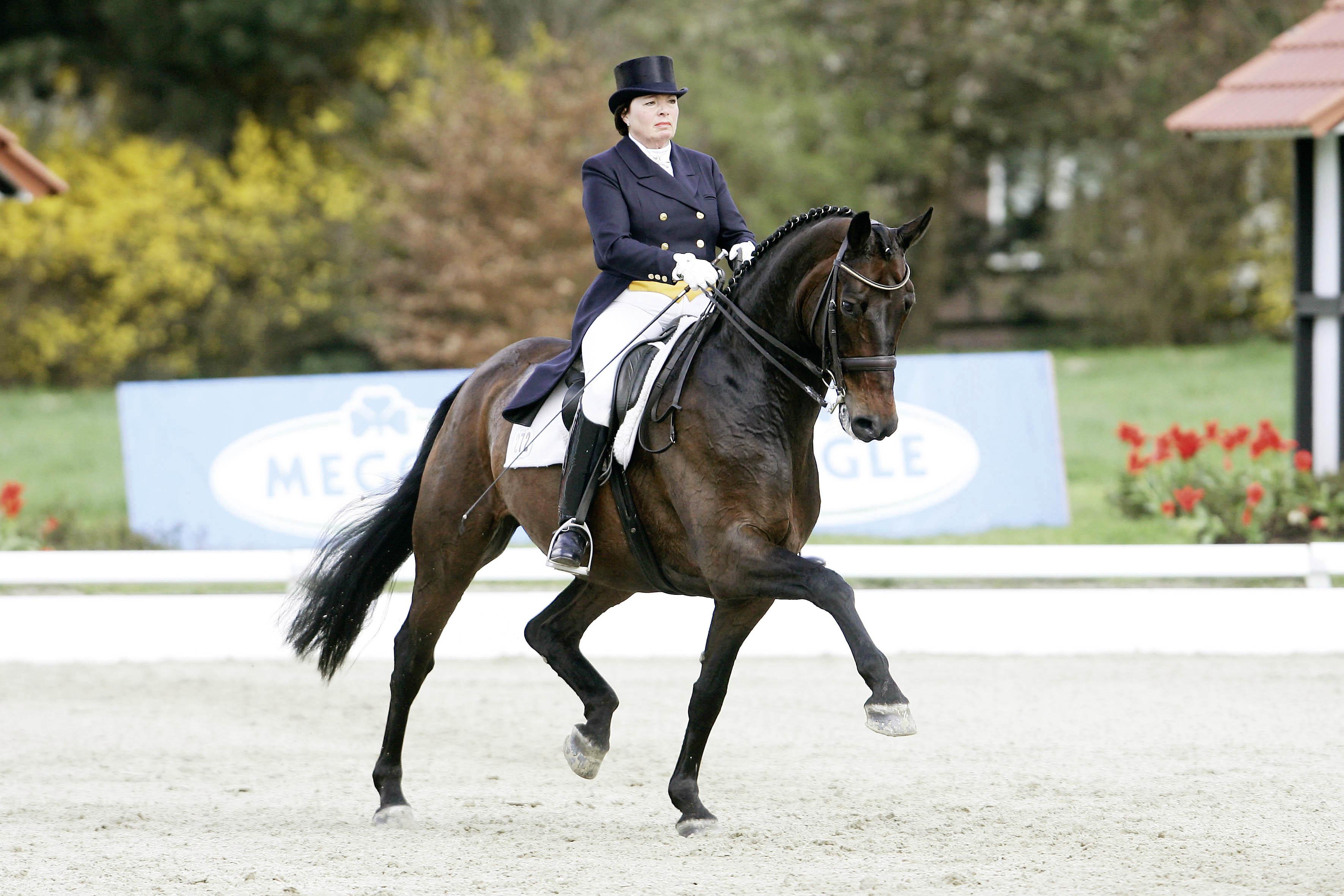Equestrian - djockey Kasselmann