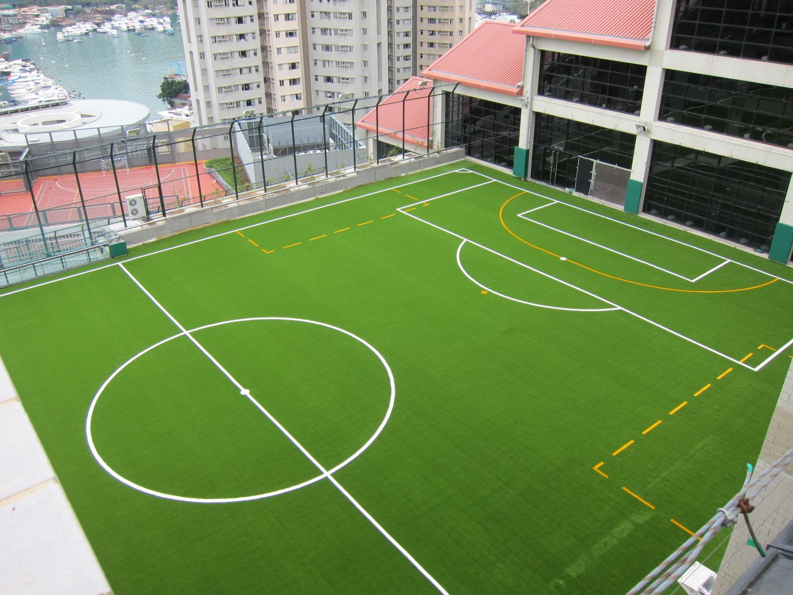 (10) Peak School HongKong (MultiPurpose)